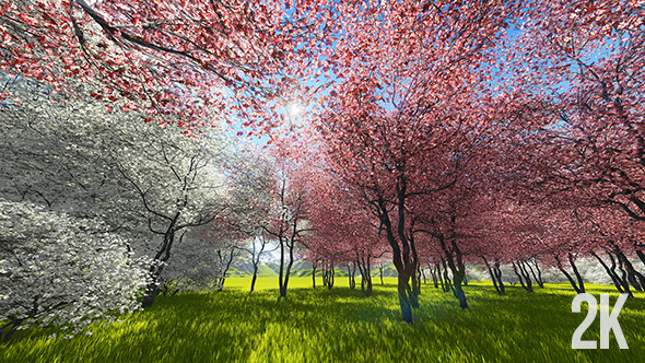 Download Japanese Sakura Garden nulled download