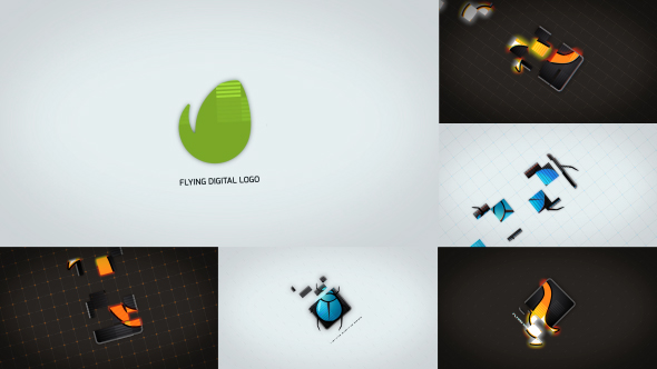 Digital Flying Logo