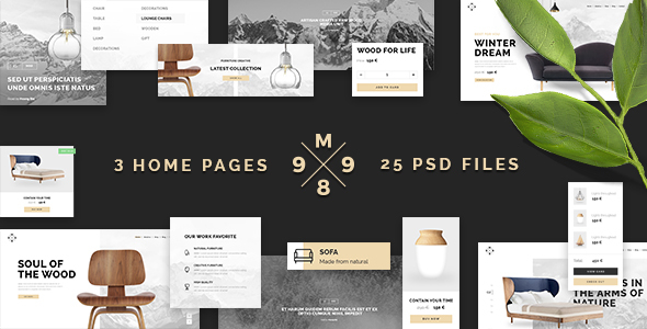M989 | Ecommere  PSD Template