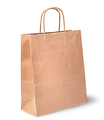 Empty open brown paper bag for food vertically