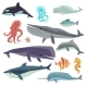 Sea Marine Fish And Animals Flat Vector Set