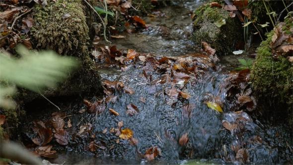 VideoHive Autumn River 18722133