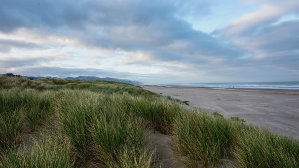 VideoHive Sandy Beach And Grass On The Coast Of Oregon 18725944