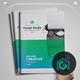 Multi-Purpose Agency Brochure Template