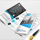 Trifold Bundle