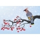 Download Vector Bird On Cherry Branch