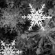 Snowflakes Matte Transitions