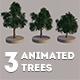Animated Trees Set