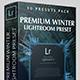 Premium Winter Lightroom Preset