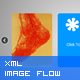 XML Product Flow Or Team Viewer V2 - ActiveDen Item for Sale