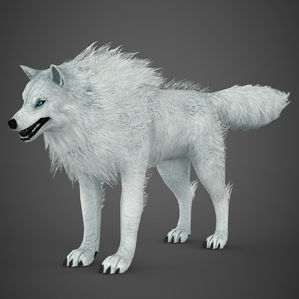 White Wolf - 3DOcean Item for Sale