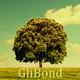 GliBond
