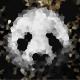 Panda On Parole
