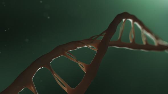 Download DNA nulled download