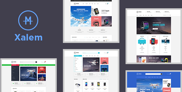 Leo Xalem Responsive Multiple Theme