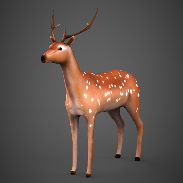 Low poly Deer - 3DOcean Item for Sale