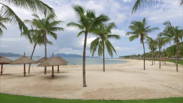 VideoHive View of the Sandy Beach With Umbrellas and Palm 18883879