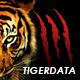 TigerData