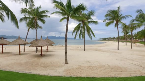 VideoHive View of the Sandy Beach With Umbrellas and Palm 18886630