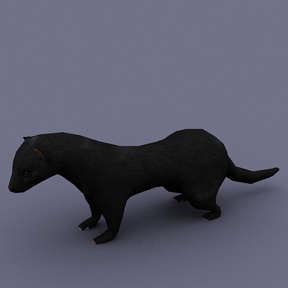 ferret black - 3DOcean Item for Sale