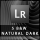 5 B&W Natural Dark Lightroom Presets