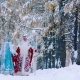 Father Frost and Snow Maiden Going on a Footpath in Snowy Forest