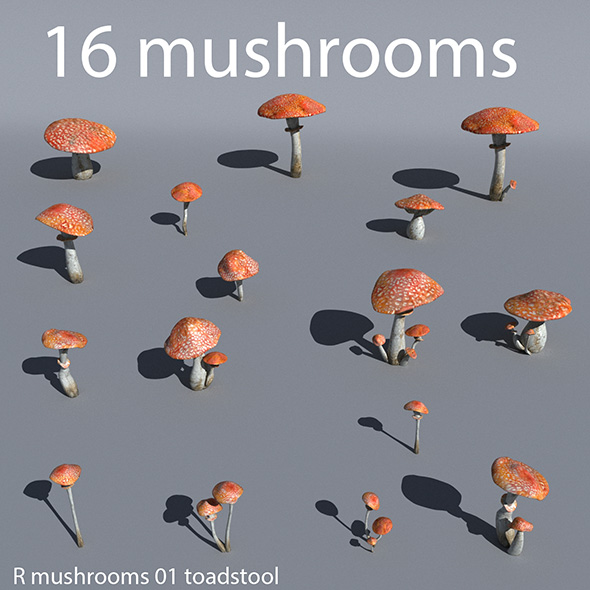 Mushrooms collection 01 - 3DOcean Item for Sale