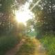 Moving Along Rural Road Toward the Sun