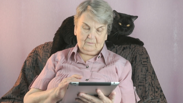 VideoHive Elderly Woman Sits at Armchair Next To Black Cat 18922927