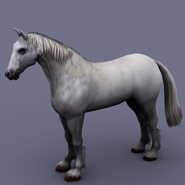 horse white - 3DOcean Item for Sale