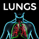 Human Body with Lungs