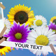 Flowers Album - VideoHive Item for Sale