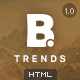 B - Trends Ecommerce Multipurpose HTML Template