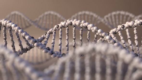 Download Multiple Spinning Brown DNA Molecules nulled download