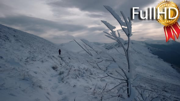 VideoHive Frozen Tree in the Mountains Out of Focus Girl 18983695