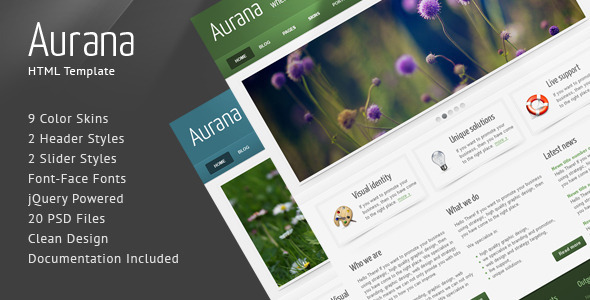 ThemeForest Aurana Clean HTML Template 127943