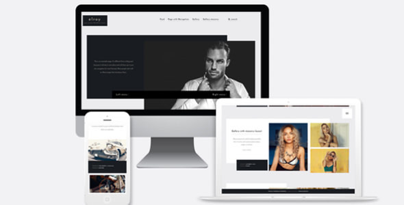 Elroy - Simple Modern Portfolio Theme