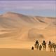 Arabian Dunes