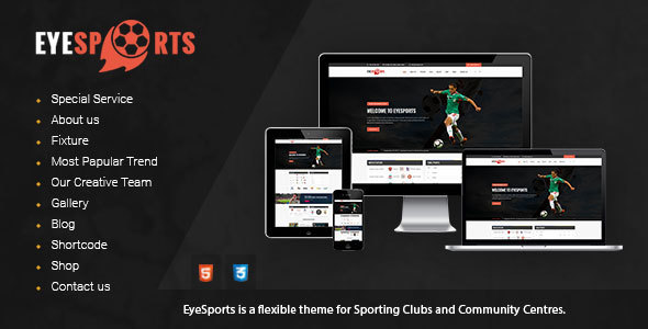 Eye Sports – Fixtures and Sports WordPress Theme (Nonprofit)