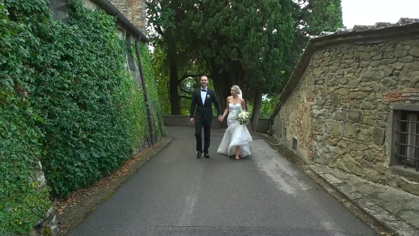 VideoHive Newlyweds Walking Holding Hands Slow 19003387