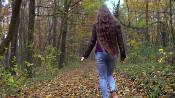 VideoHive Young Beautiful Woman with Long Hair Walking in the Autumn Forest 19003765