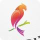 Birdie / Bird - Logo Template