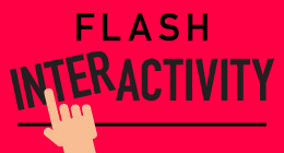 Flash Interactivity