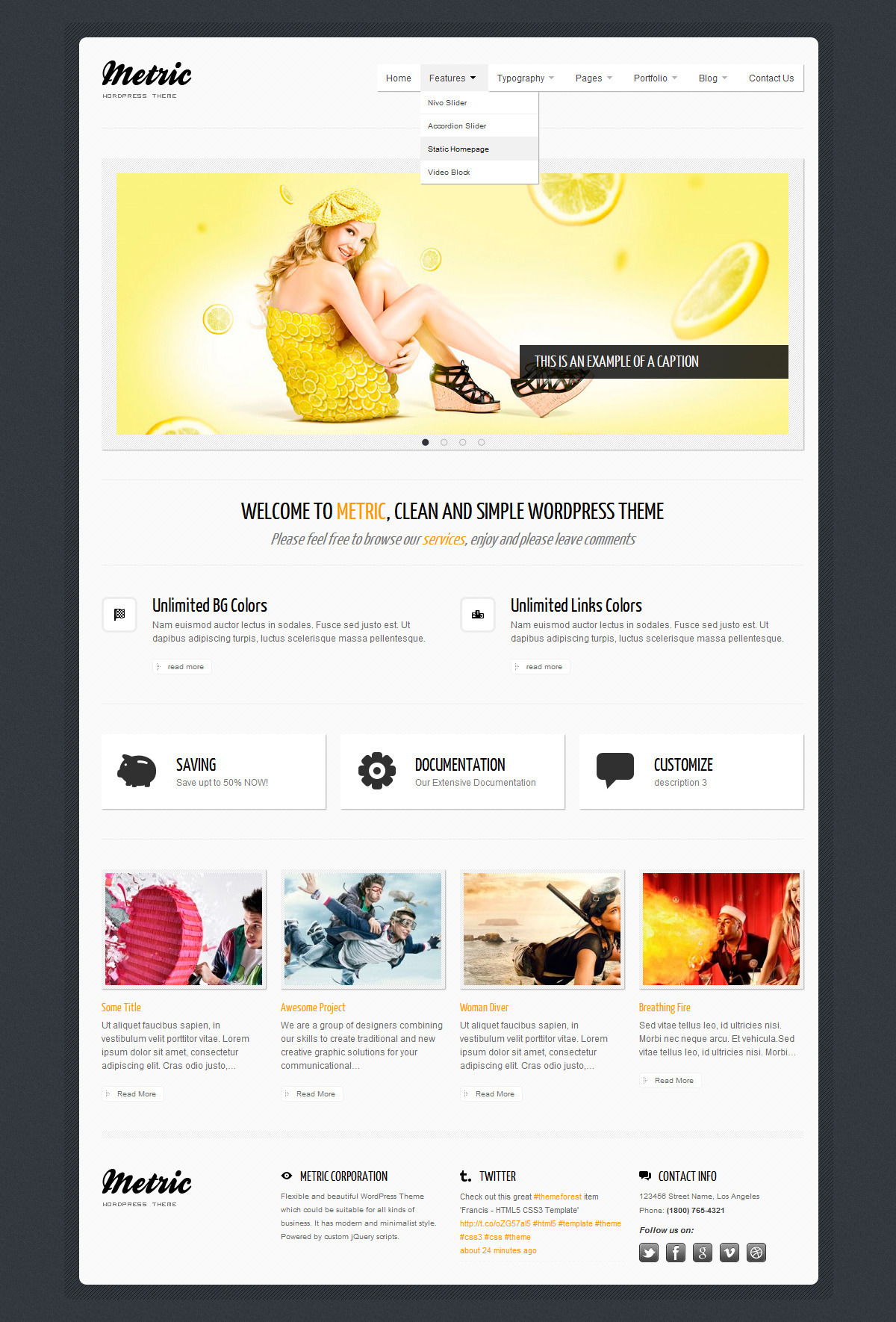 METRIC - Premium WordPress Theme - Home Page