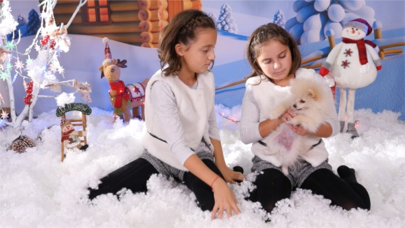Twins Playing with a Puppy on Christmas Decor