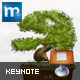 Bonsai Keynote Template - GraphicRiver Item for Sale