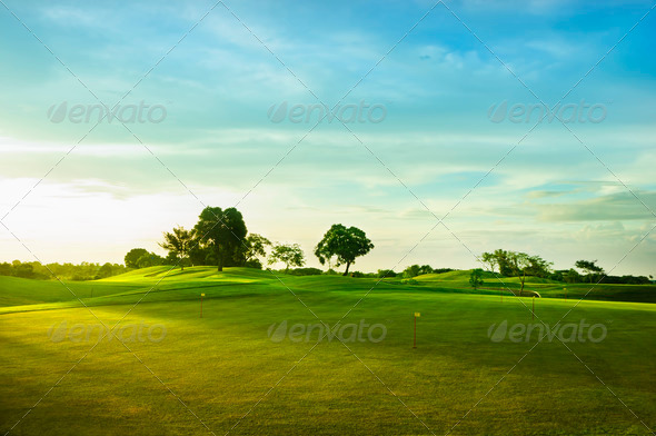 Golf Greens - Stock Photo - Images