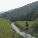 Young Woman Walking Along Terraced Rice Field