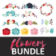 Download Vector Flowers Pack