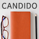 Candido - Portfolio WordPress Theme